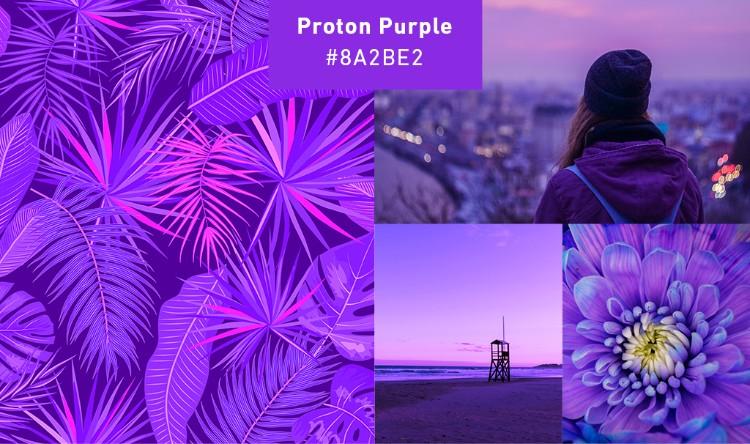 proton purple collage millennial branding